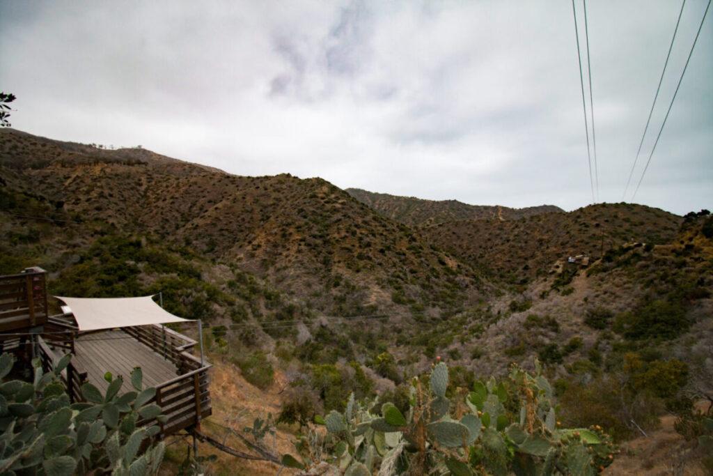 Catalina Island Zip Line Tour