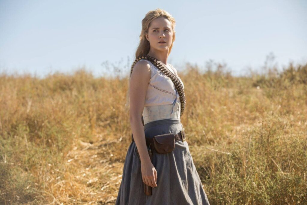 best shows to binge watch, Westworld