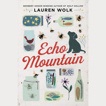 Echo Mountain, Lauren Wolk, Book Review